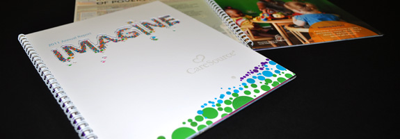 CareSource 2011 Annual Report